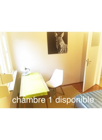 W3 «Le Soleil» chambre en colocation rue Weyer Luxembourg
