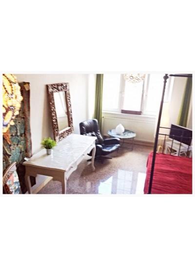 St1  Studio1 «La Jungle»